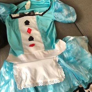 Other - Alice in Wonderland costume